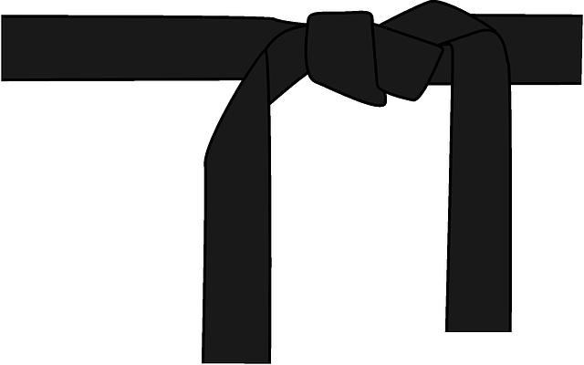 Que signifie les couleurs des ceintures au Judo ?